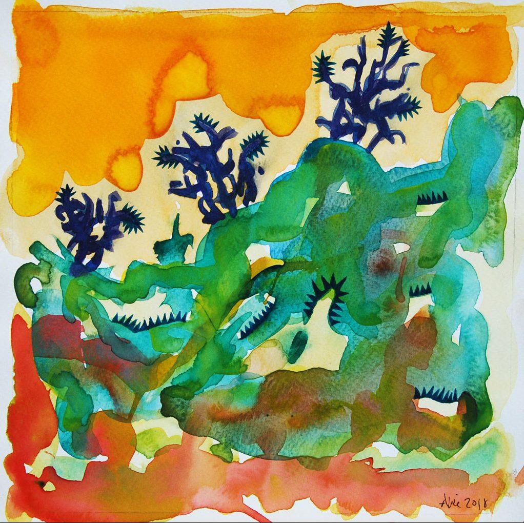 Les cactus marocains