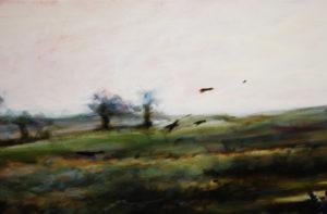 Les oiseaux de Blanche Bérat