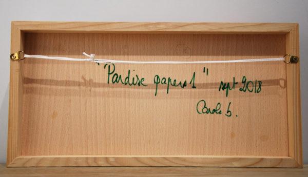 Paradise papers de Carole b.